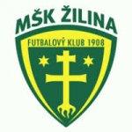 logo_MS__K_Z__ilina